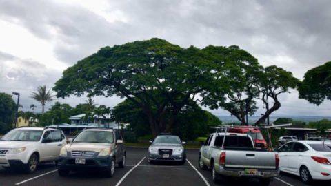 2018ハワイ ハワイ島 ツアー ビッグアイランドキャンディーズ