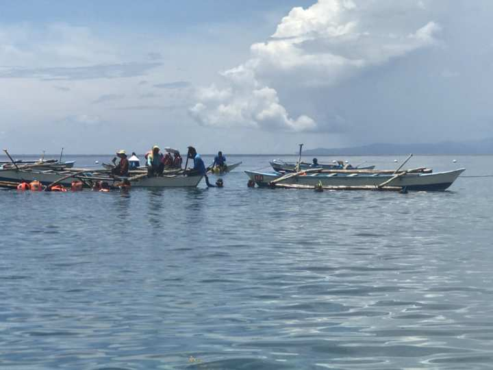 2017cebu_オスロブ ボートが並ぶ