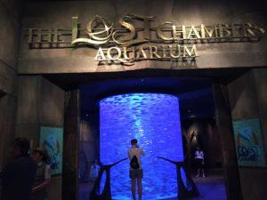 2017UAEドバイ アトランティス 水族館