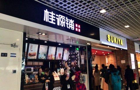 上海 浦東空港 リニア